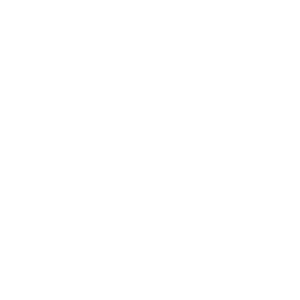 Boot Würzburg Logo