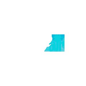 Wagnair Logo
